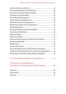 Einblick in das Inhaltsverzeichnis Seite 2, des Ratgeber zur Flexi Rente von rentenbescheid24.de, denn Wissen heißt wissen, wo es steht.